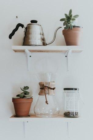 Pour la santé et le moral, misez sur les plantes d'intérieur. Les plus tendances sont les petites plantes grasses.