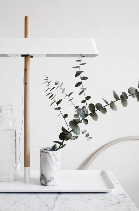 L'eucalyptus s'accorde parfaitement avec le style minimaliste.