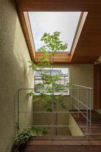 arbre dans la maison