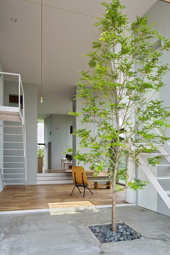 La position centrale de la nature. © Pinterest